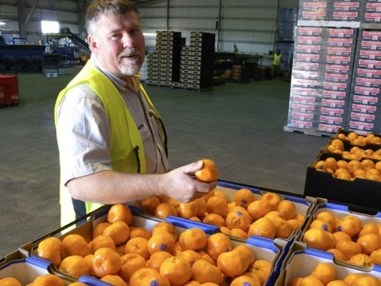 Citrus officer recognised for service to industry