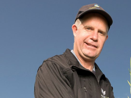 Structure seeding programs to minimise frost risk