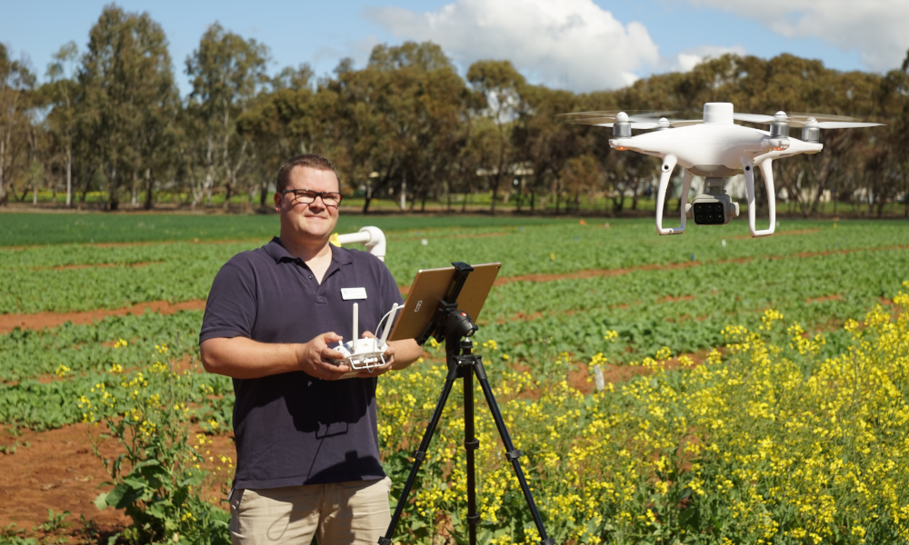 Project evaluating 'eyes in the sky' technology to detect crop pests