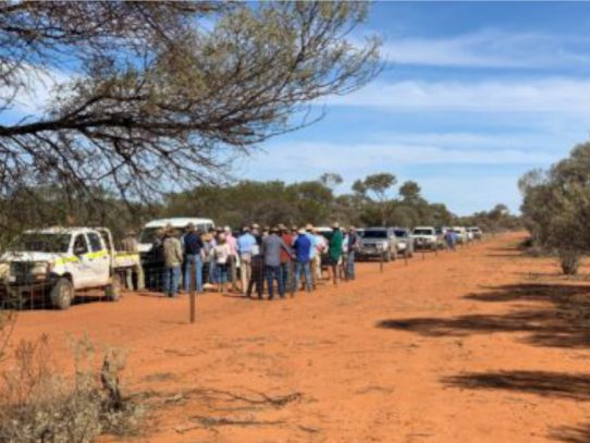 Collective action against wild dogs in the WA Southern Rangelands
