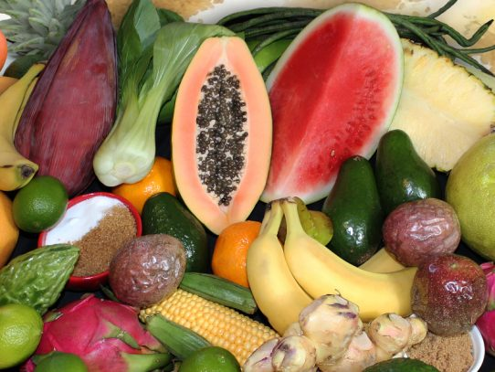 New surveillance strategy for pests of tropical plant industries